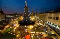 Der größte Weihnachtsbaum der Welt in Dortmund (2015)