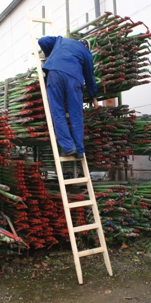 Baustellen-Anlegeleiter Holz