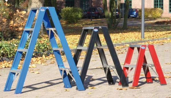 Stufen-Stehleiter, bis 250 kg belastbar, beidseitig